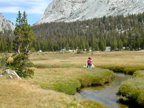 Yosemite High Camp