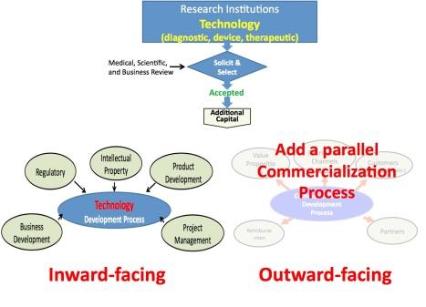 outward facing